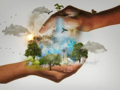 Стиль-жизни-и-окружающая-среда