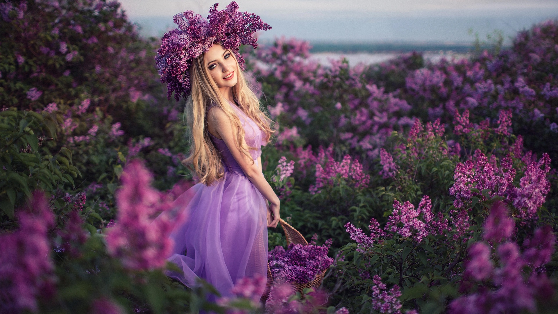 любовь к сиреневому цвету