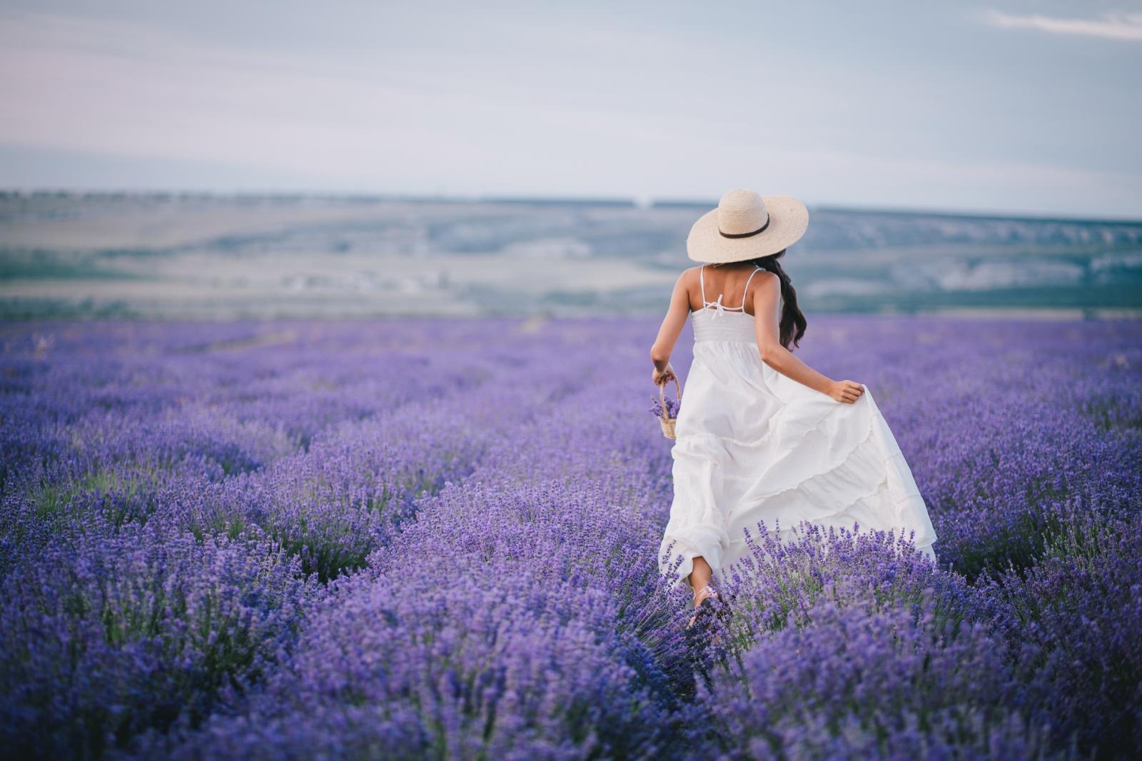 девушка на сиреневом поле