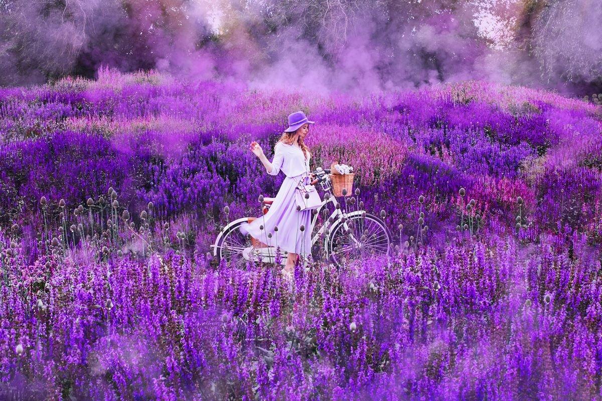 оттенки фиолетового или сиреневого цвета - что означают