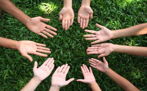 Социальные установки: что это в психологии, функции, виды, структура, примеры из жизни