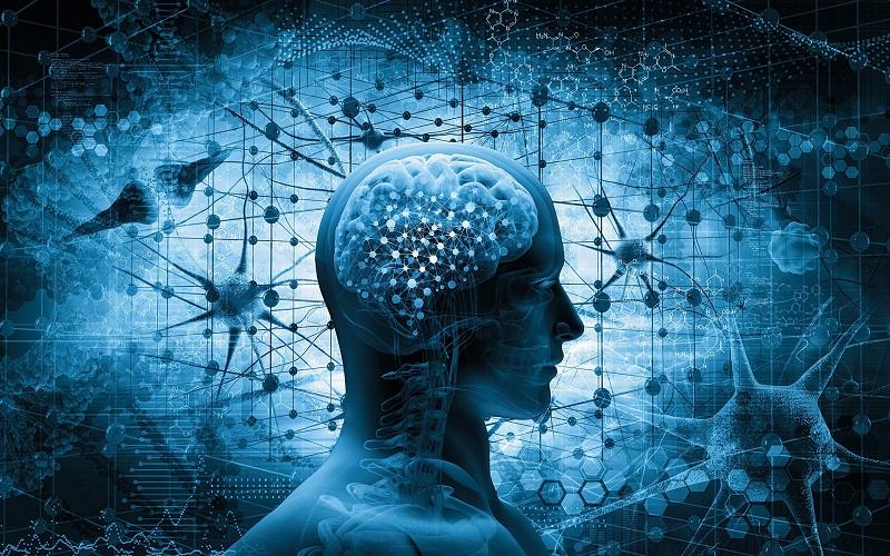основные формы мышления